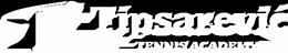 Tipsarevic Academy Japan
